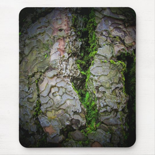 Mossy Bark  by djoneill Mouse Pad