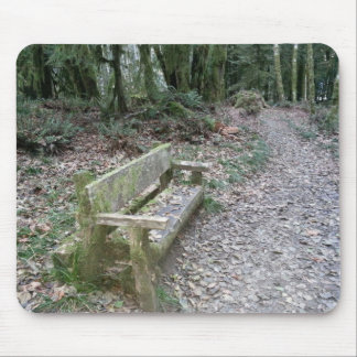 Mossy bench Moments in Time trail Olympic Nationa Mouse Pad