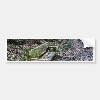 Mossy Bench Nature Trail in Olympic National Park Bumper Sticker