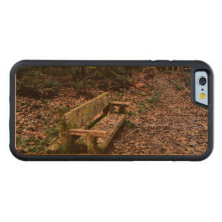 Mossy Bench Nature Trail in Olympic National Park Carved® Cherry iPhone 6 Bumper