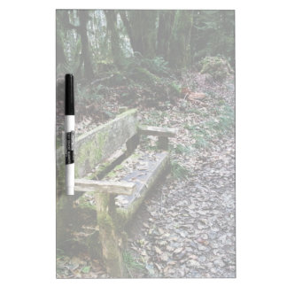 Mossy Bench Nature Trail in Olympic National Park Dry Erase Board