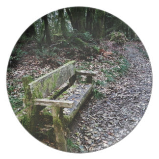 Mossy Bench Nature Trail in Olympic National Park Melamine Plate