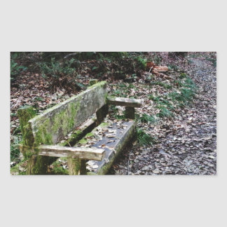 Mossy Bench Nature Trail in Olympic National Park Rectangular Sticker