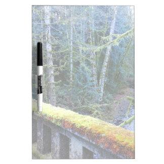mossy Bridges Near Lake Crescent Lodge Dry Erase Board