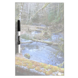 mossy Bridges Near Lake Crescent Lodge Frosted Dry Erase Board