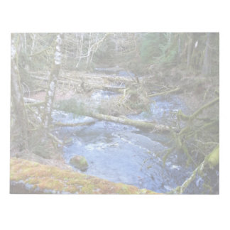 mossy Bridges Near Lake Crescent Lodge Notepad