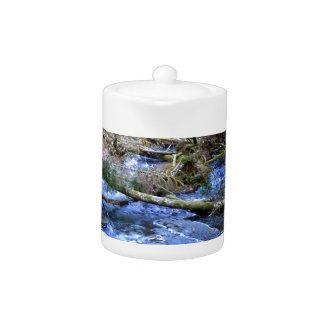 mossy Bridges Near Lake Crescent Lodge Teapot