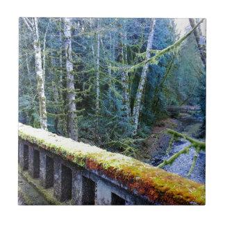 mossy Bridges Near Lake Crescent Lodge Tile