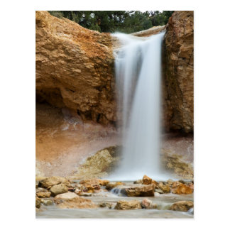 Mossy Cave Waterfall Postcard