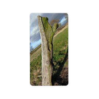 Mossy Dead Tree Trunk Address Label
