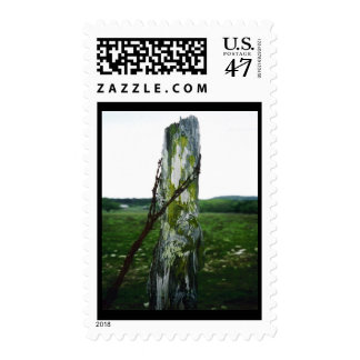 Mossy Fence Post 2 Postage Stamp