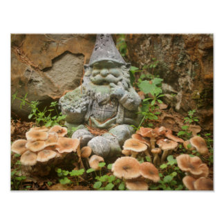 Mossy Gnome and toadstools in a garden Poster