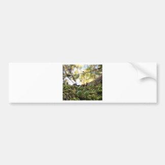 Mossy Grace Bumper Sticker