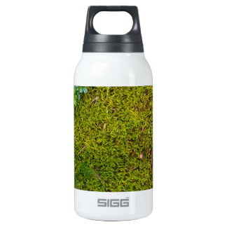 Mossy Green Thermos Bottle