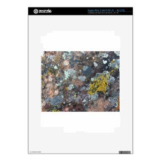 mossy iPad 3 decals