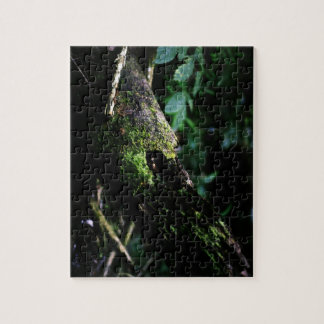 mossy jungle jigsaw puzzle