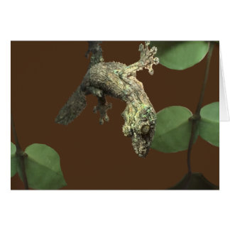 Mossy Leaf-Tailed Gecko – Master of Disguise Card