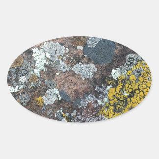 mossy oval sticker