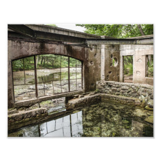 Mossy Paradise Building Photography Print