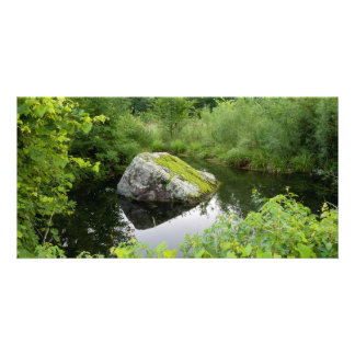 Mossy Rock in Pond Card