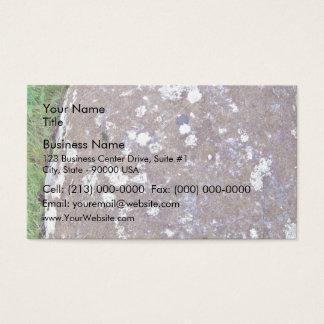 Mossy Rock on a Grassy Landscape Business Card