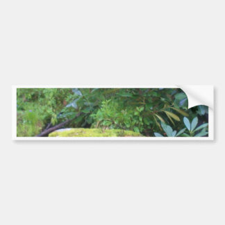 mossy rock on mountain stream bumper sticker
