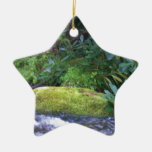 mossy rock on mountain stream ornaments