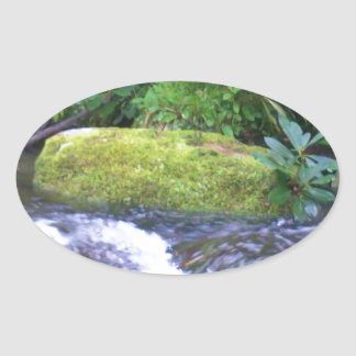 mossy rock on mountain stream oval sticker