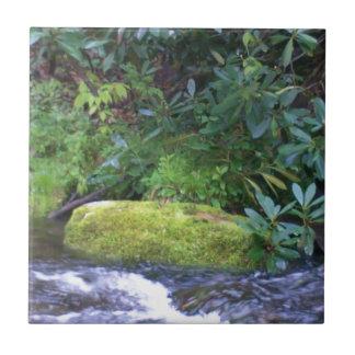 mossy rock on mountain stream tile