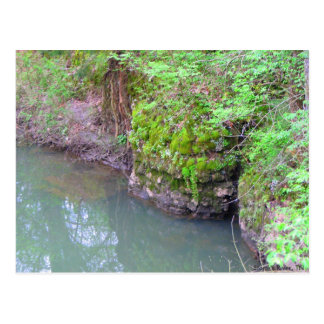 Mossy Rock Postcard