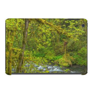 Mossy Rocks And Trees Line Eagle Creek iPad Mini Cases