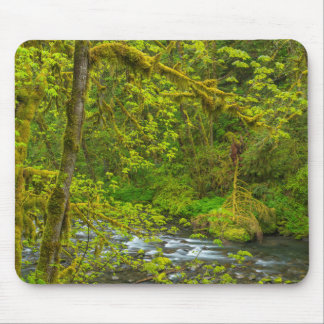 Mossy Rocks And Trees Line Eagle Creek Mouse Pad