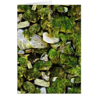 Mossy Rocks Background Greeting Card