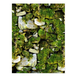 Mossy Rocks Background Postcard