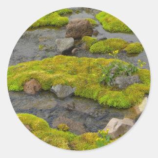 Mossy Rocks Classic Round Sticker