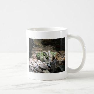 Mossy Rocks Coffee Mug