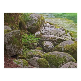 mossy rocks postcard
