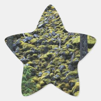 Mossy Rocks Star Sticker