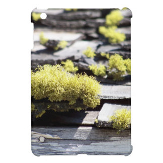 Mossy Roof Case For The iPad Mini