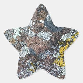 mossy star sticker
