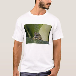 Mossy Treefrog, Theloderma corticale, Native T-Shirt