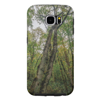 Mossy Trees in Pacific Northwest Samsung Galaxy S6 Case