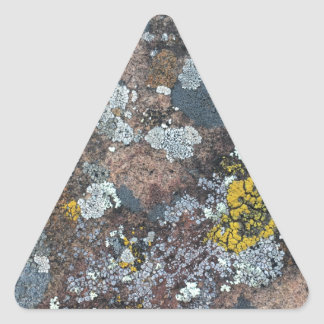 mossy triangle sticker