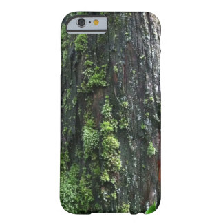 Mossy Trunk Barely There iPhone 6 Case