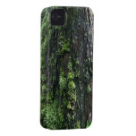 Mossy Trunk iPhone 4 Case-Mate Case