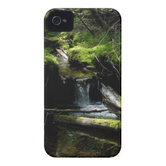 Mossy Waterfall iPhone 4 Cover