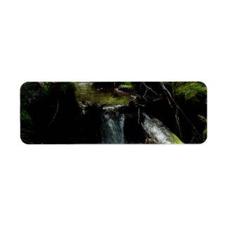 Mossy Waterfall Return Address Label