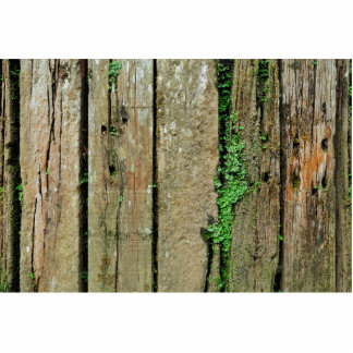 Mossy Wooden Fence Statuette
