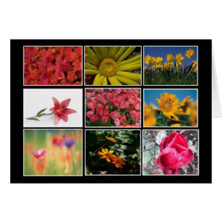 Most Beautiful Flower Pics Collage Note Card