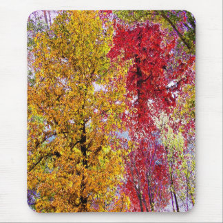 Most Colorful Season of Life Mouse Pad